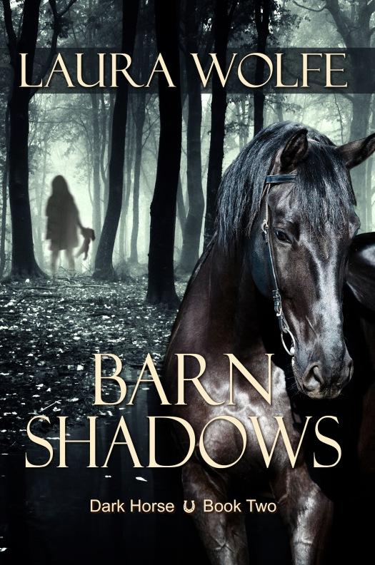 barnshadows42737