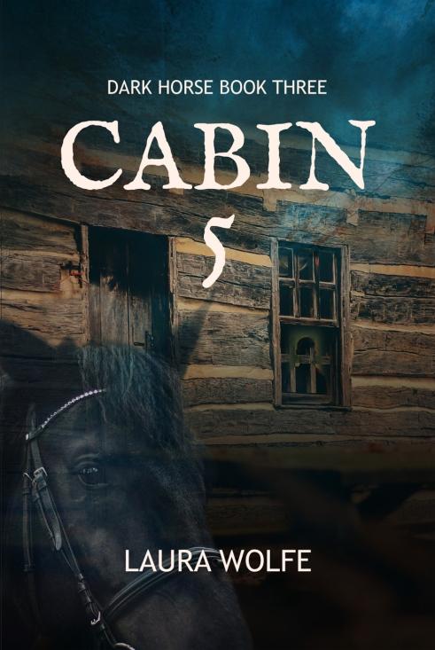 Cabin5_FullCov1 (2)